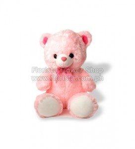 Teddy-Bear Small